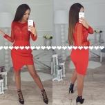 Punane pika varrukaga kleit
